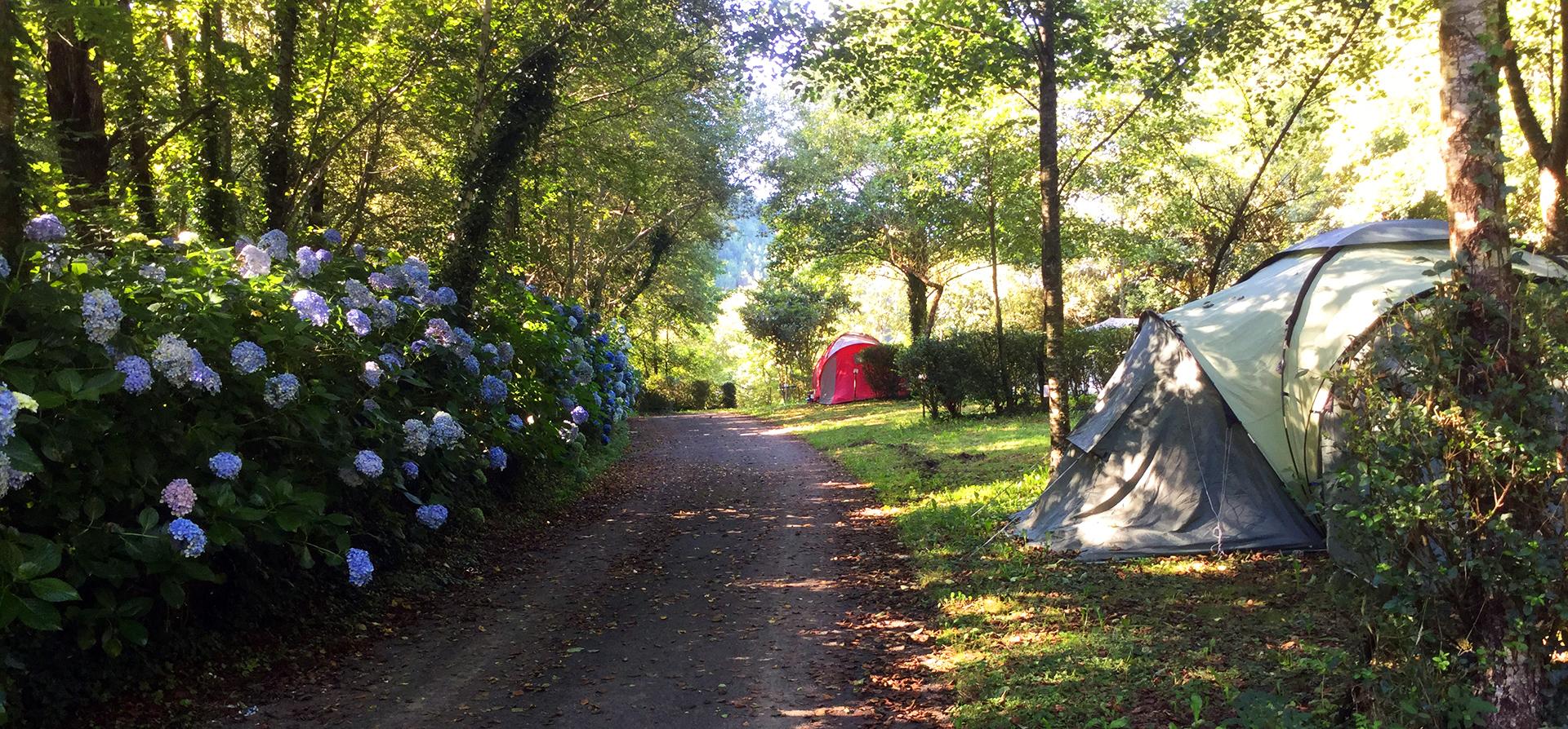 Zingira Camping
